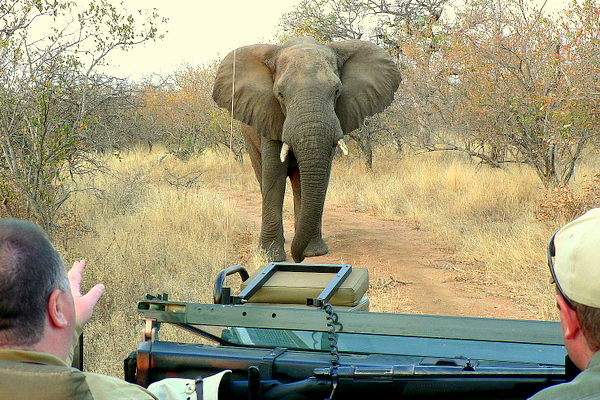 A Brief History of the Kruger National Park